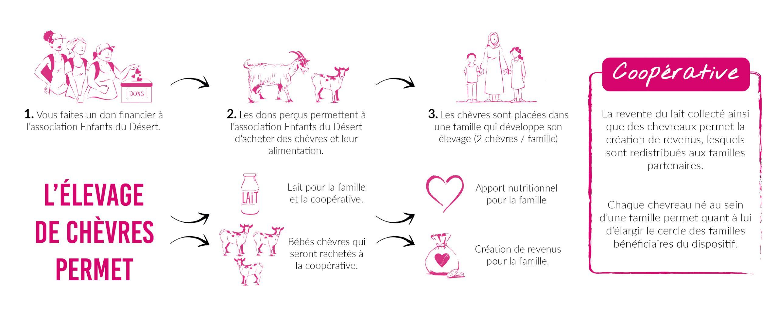 Rose Trip Maroc : schéma du projet solidaire